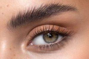 brow lamination1